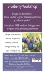 Cover photo for Blueberry Workshop on Feb 16