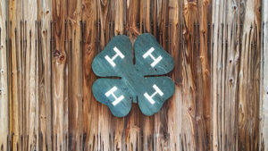 A brown, worn wooden background with a green 4-H clover logo affixed in the middle.