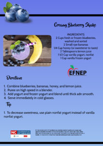 Creamy Blueberry Shake