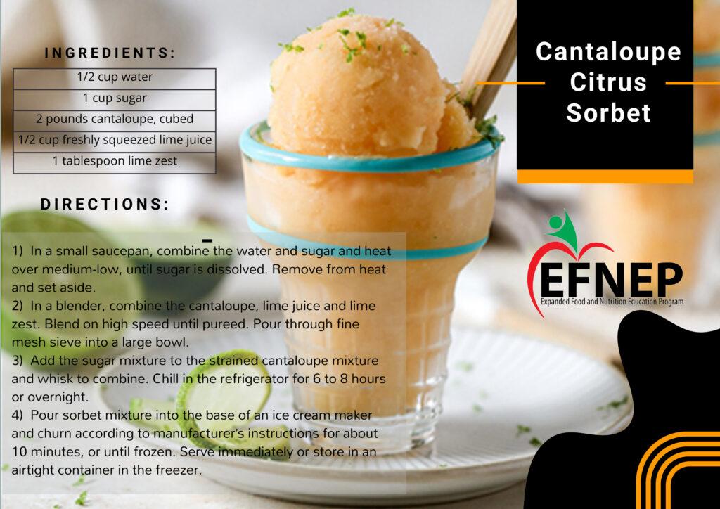 Cantaloupe Citrus Sorbet